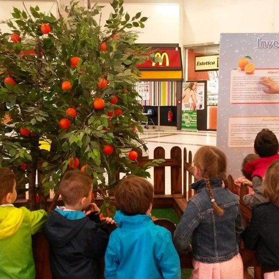 eventi-educativi-centro-commerciale-frutta-e-giardino-1