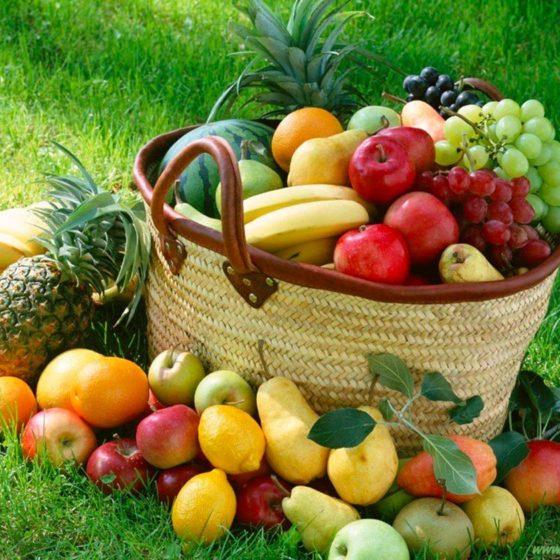 eventi-educativi-centro-commerciale-frutta-e-giardino